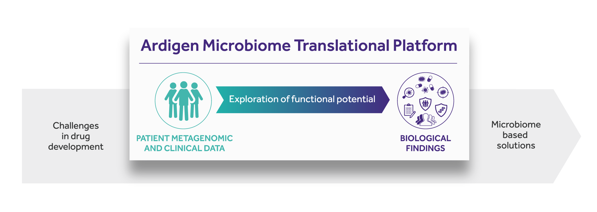 Our approach for translational microbiomics schema
