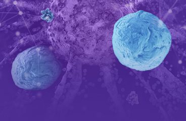 Reaching beneath the tip of the iceberg: Discovering the potential of TCR-T therapies in treating cancer