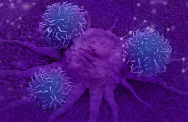 Current and future directions in CAR-T and TCR-T cell therapies against solid tumors